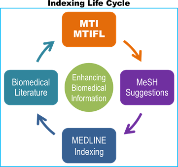 image is Indexing Life Cycle starting with Biomedical Text > MTI/MTIFL > MeSH Suggestions > MEDLINE Indexing > back to Biomedical Text.  In the center is a circle with Enhancing MEDLINE Access